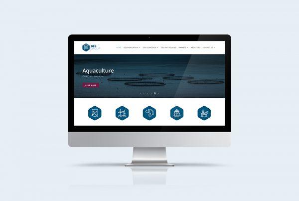 responsive website oes group kleidi professionele website of webshop laten maken amsterdam